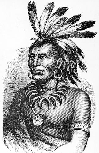 Miami Indian Tribe