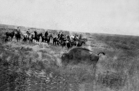 Buffalo hunt south of Hays, Kansas