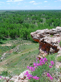 Point of Rocks, Cimarron National Grassland