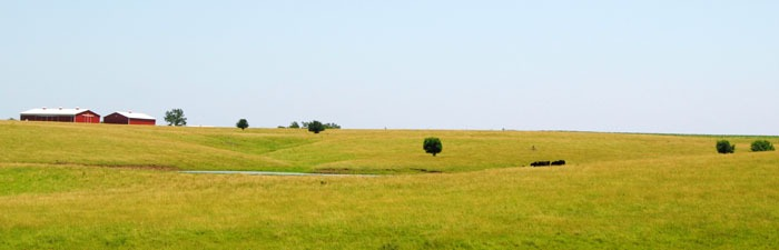 Douglas County, Kansas landscape near the old town of Lone Star, Kansas by Kathy Weiser-Alexander.
