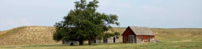 Southwest Kansas is filled with grassy plains.