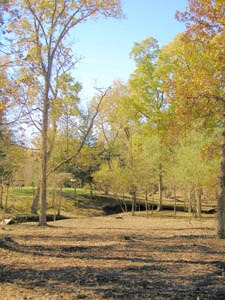Battle of Black Jack, Kansas site by Kathy Weiser-Alexander.