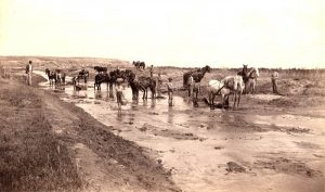 Eureka Canal, Kansas about 1884.