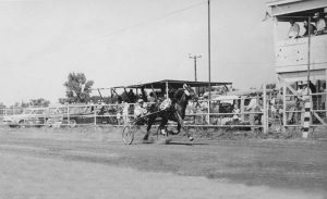 Eureka, Kansas Horse Racing