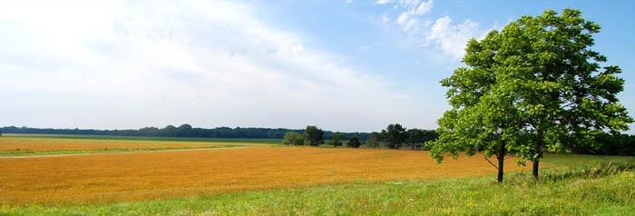 Greenwood County, Kansas Landscape