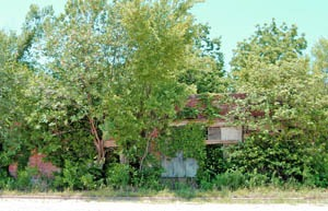 Once a prospering business, this abandoned building can barely be seen behind the trees and vines, by Kathy Weiser-Alexander.