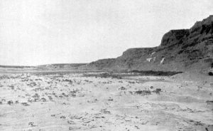 Shale Outcropping on the Smoky Hill River, 1903.